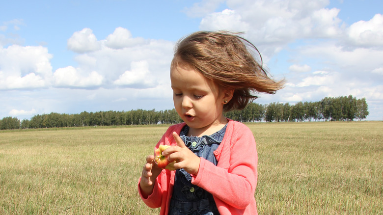 baby in breezy field with apple