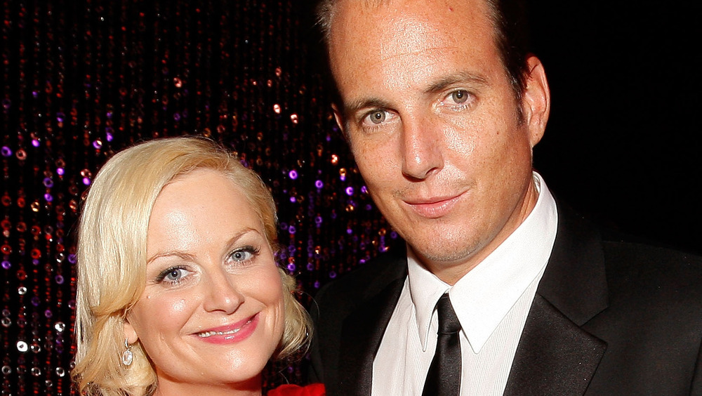 Is This Why Amy Poehler And Will Arnett Divorced?