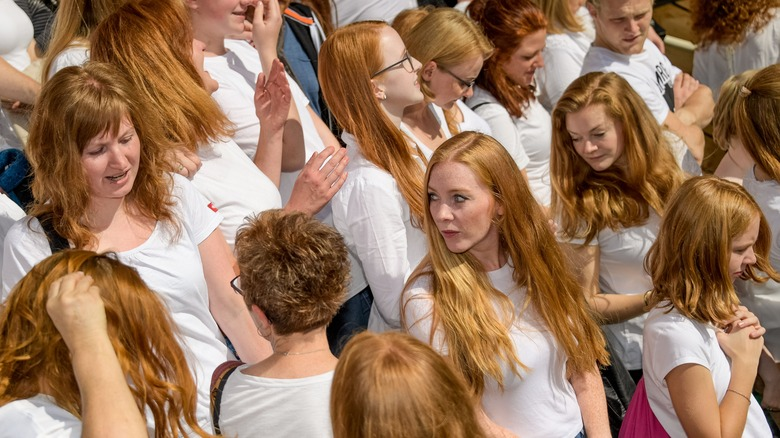 A group of redheaded women